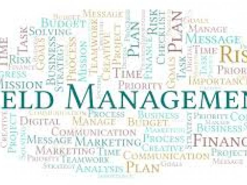 Formation yield management